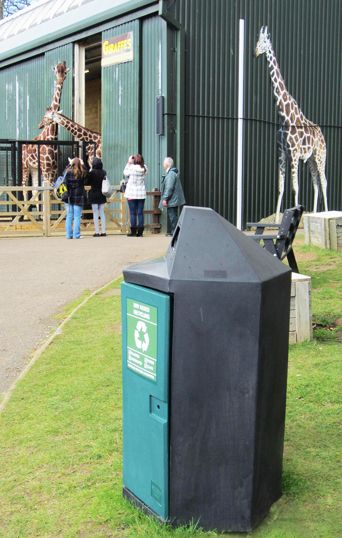 Hex Bin & Giraffes at Whipsnade Zoo
