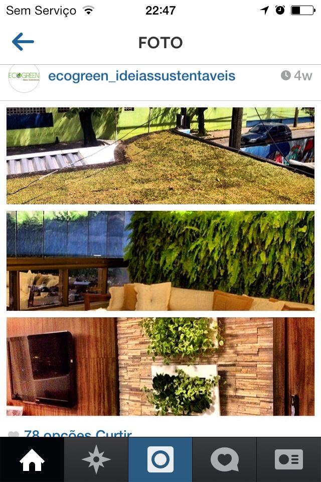 Gostei mto dessa decoracao com plantas dentro de casa