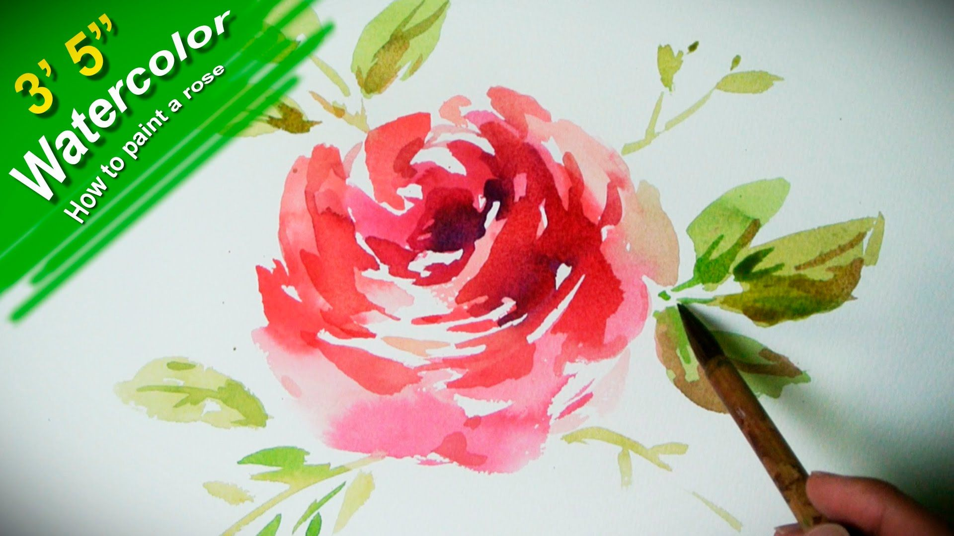 How To Paint A Rose With Watercolor Jay Art Jaylee Is A