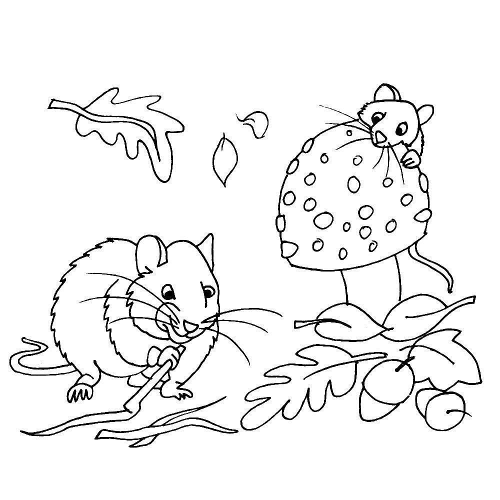 Leuk Voor Kids Twee Muisjes Verzamelen Een Voorraad Voor De Winter Fall Coloring Pages Kids Printable Coloring Pages Halloween Coloring Pages