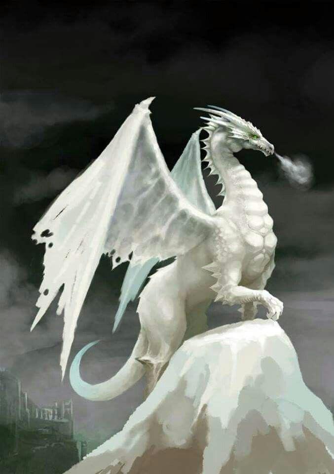 white dragon dragons in 2018 pinterest dragon fantasy dragon