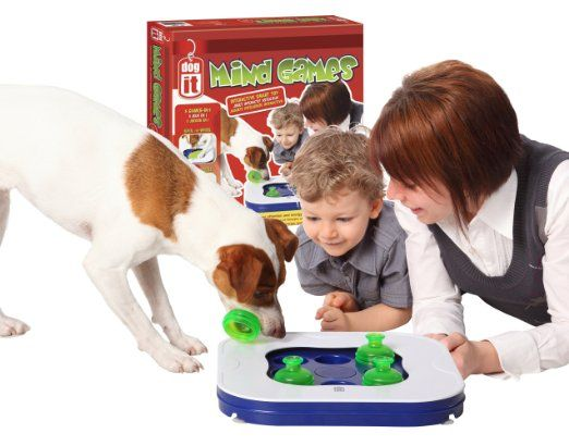 Amazon Com Dogit Mind Games 3 In 1 Interactive Smart Toy For Dogs
