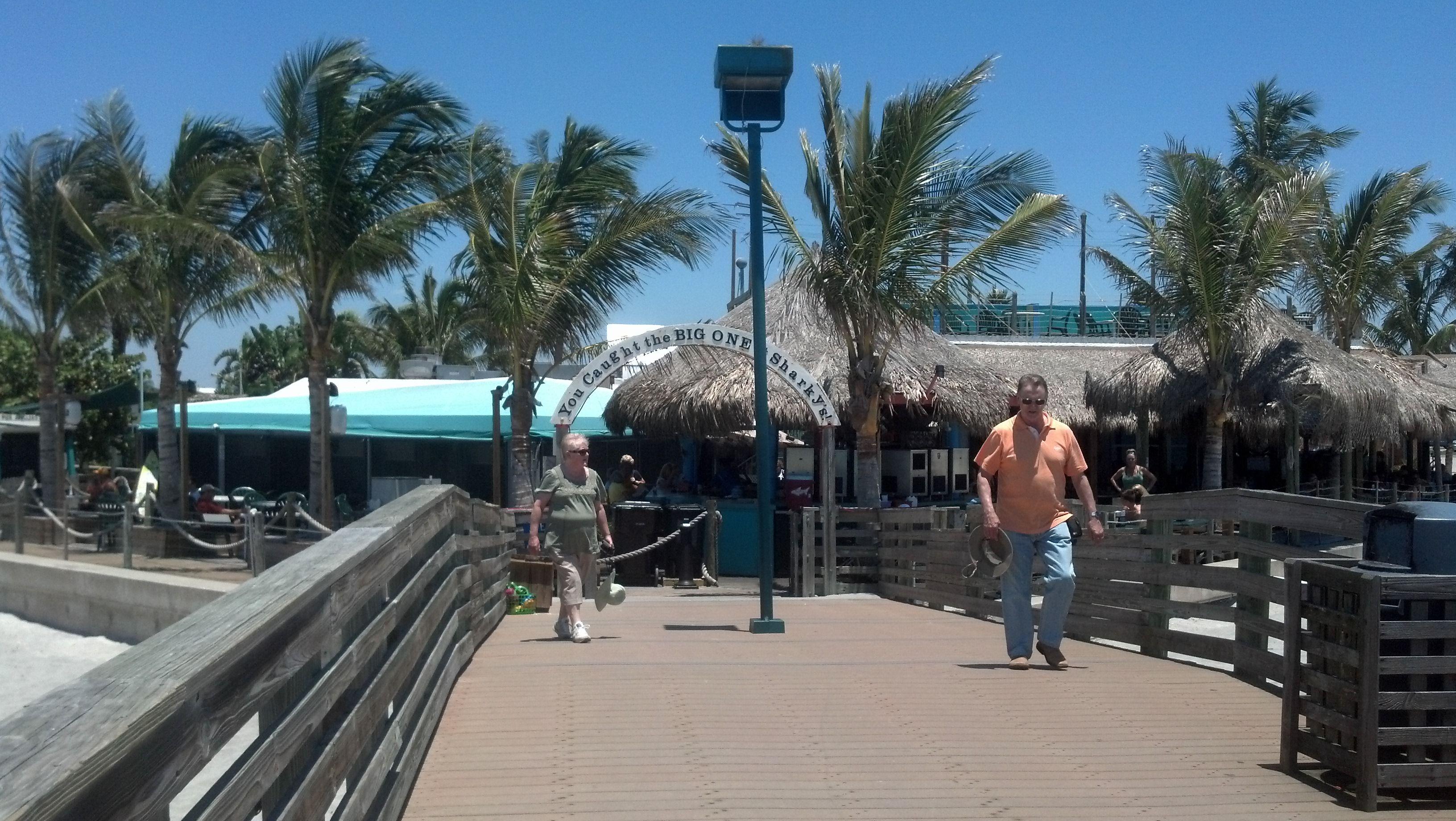 sharkys venice florida - photo#10