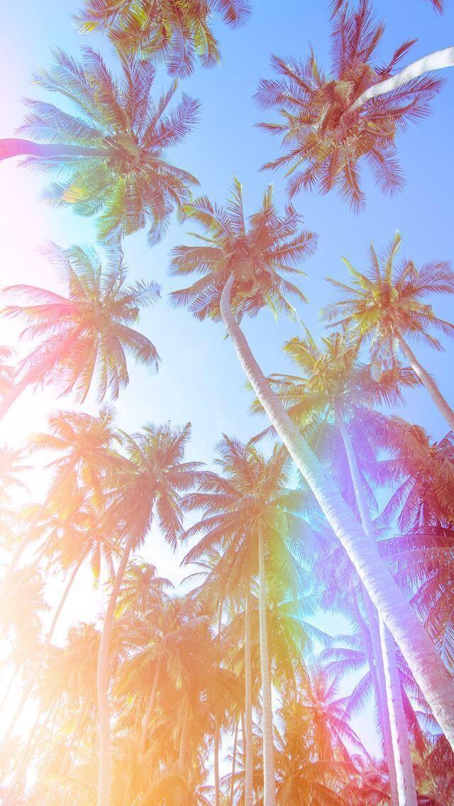 Tropical Summer Summer Vibes Pastel Colors Wallpaper Screensaver Iphone Wallpaper Iphone Screensav Fundo Pastel Papel De Parede Android Wallpaper Pastel