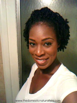 The Domestic Naturalista Mini Twist On Short Natural Hair With