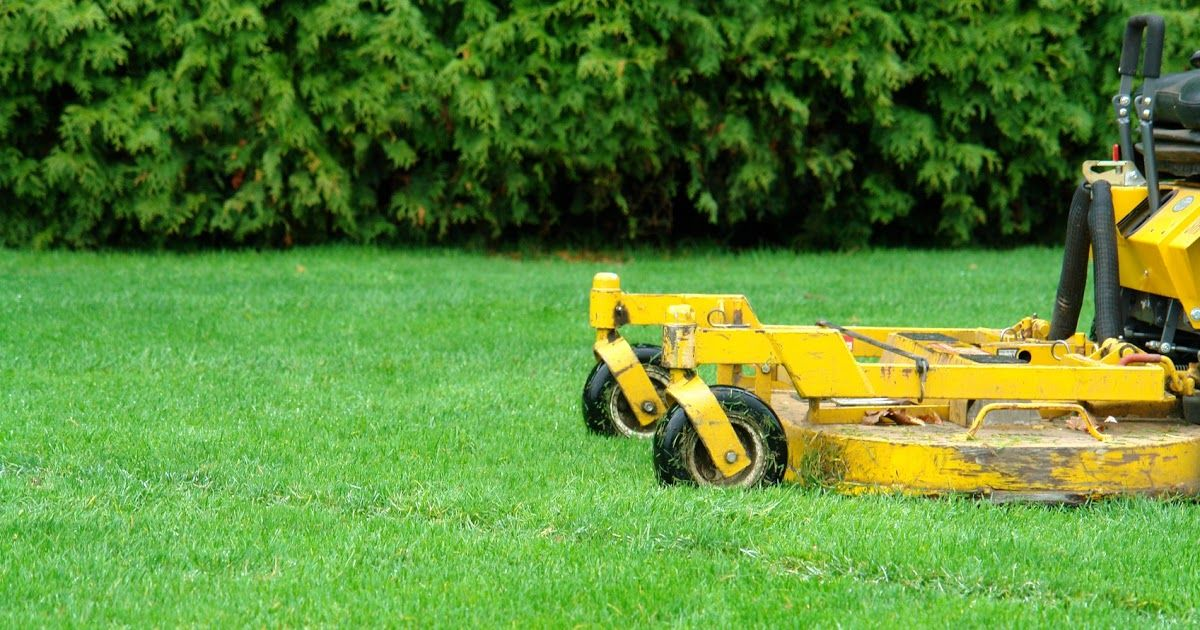 Image Result For Lawn Care Winter Image Result For Lawn