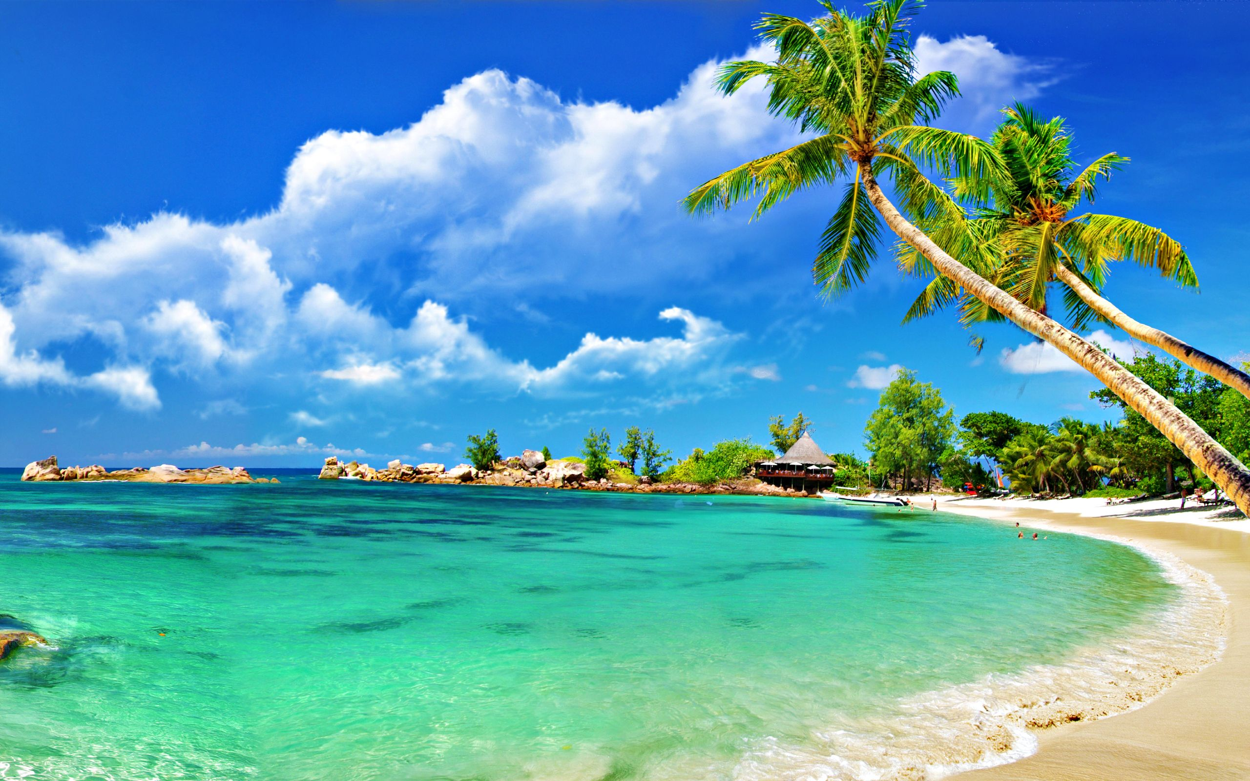 YouWall - Sunny Tropical Beach Wallpaper - wallpaper,wallpapers ...