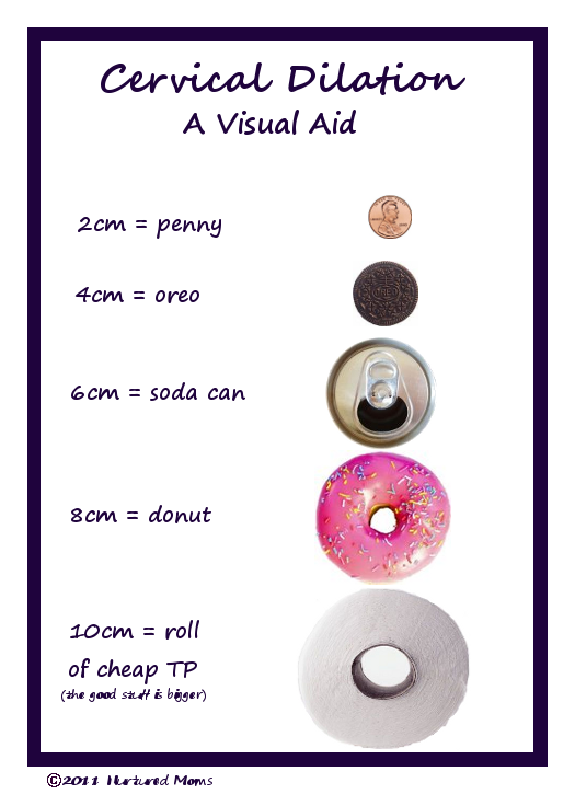 Cervical dilation chart pinterest decoding labour and doula