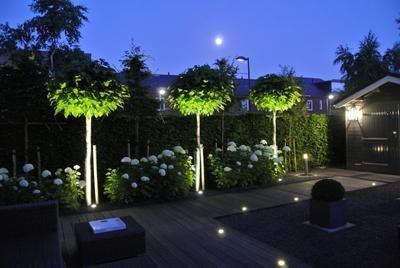 Landelijke tuin verlicht   Garden   Pinterest   Gardens