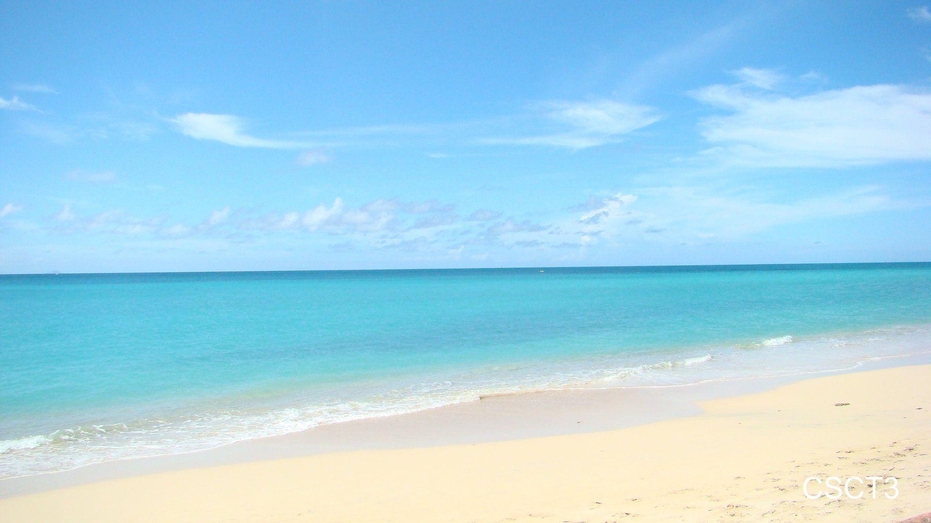free caribbean beach wallpapers wallpaper   3d wallpapers