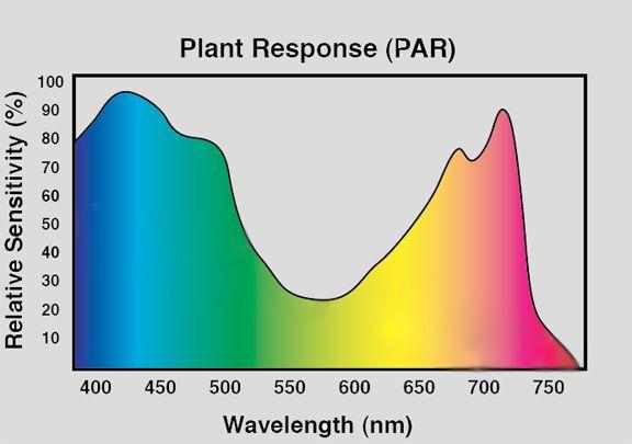Par Spectrum Graph Led Grow Lights Grow Lights Led Grow