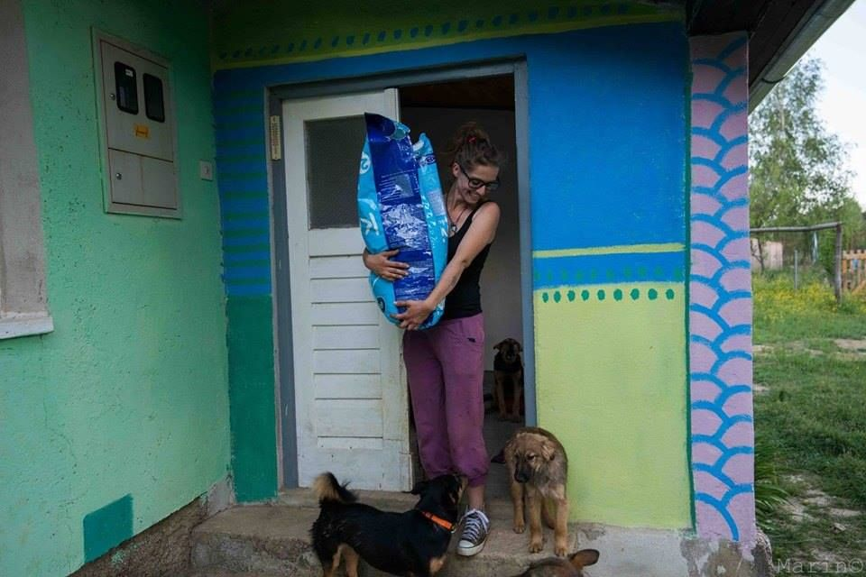 Tinka Anic Wakes Each Morning And Steps Inside Her Hand Built Rainbow Painted Rescue Cottage On A Mountaintop With Pack Of Hungry Dogany Cats All
