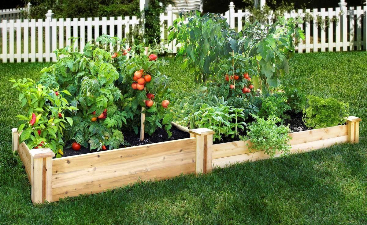 Raised Bed Vegetable Garden Plant Spacing | The Garden Inspirations