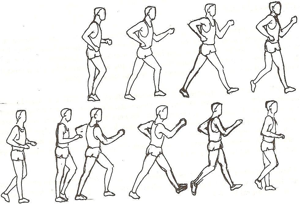 Marcha atletica y perdida de peso