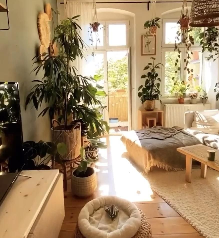 #indoorjungle #jungle #boho #bohostyle #plants #plantsofinstagram #plantsmakepeoplehappy #plantsplantsplants #plantshelfie #bedroom #bedroomdesign #bedroomideas #bedroomdecorideas #bedroomdecoration #bohobedroom #bohobedroomdecor #bohobedroomideas #bohobedroomideasmodern