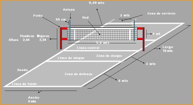 Cancha de voley medidas y posiciones
