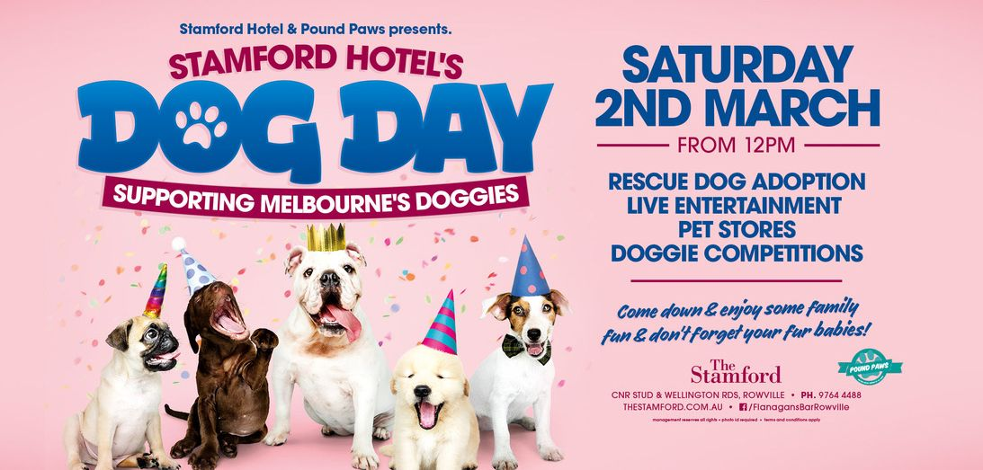 Stamford Hotel Dog Day 2019 March 2 Rescue Dogs For Adoption