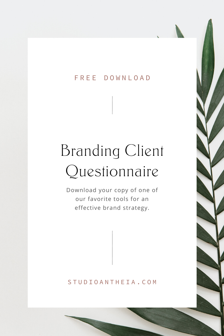 Free Branding Questionnaire Download Studio Antheia Small Business Website Design Branding Website Branding