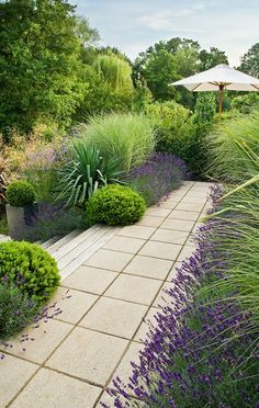 1 Acre Backyard Landscaping Google Search Low Water Landscaping Modern Garden Landscaping Garden Landscape Design