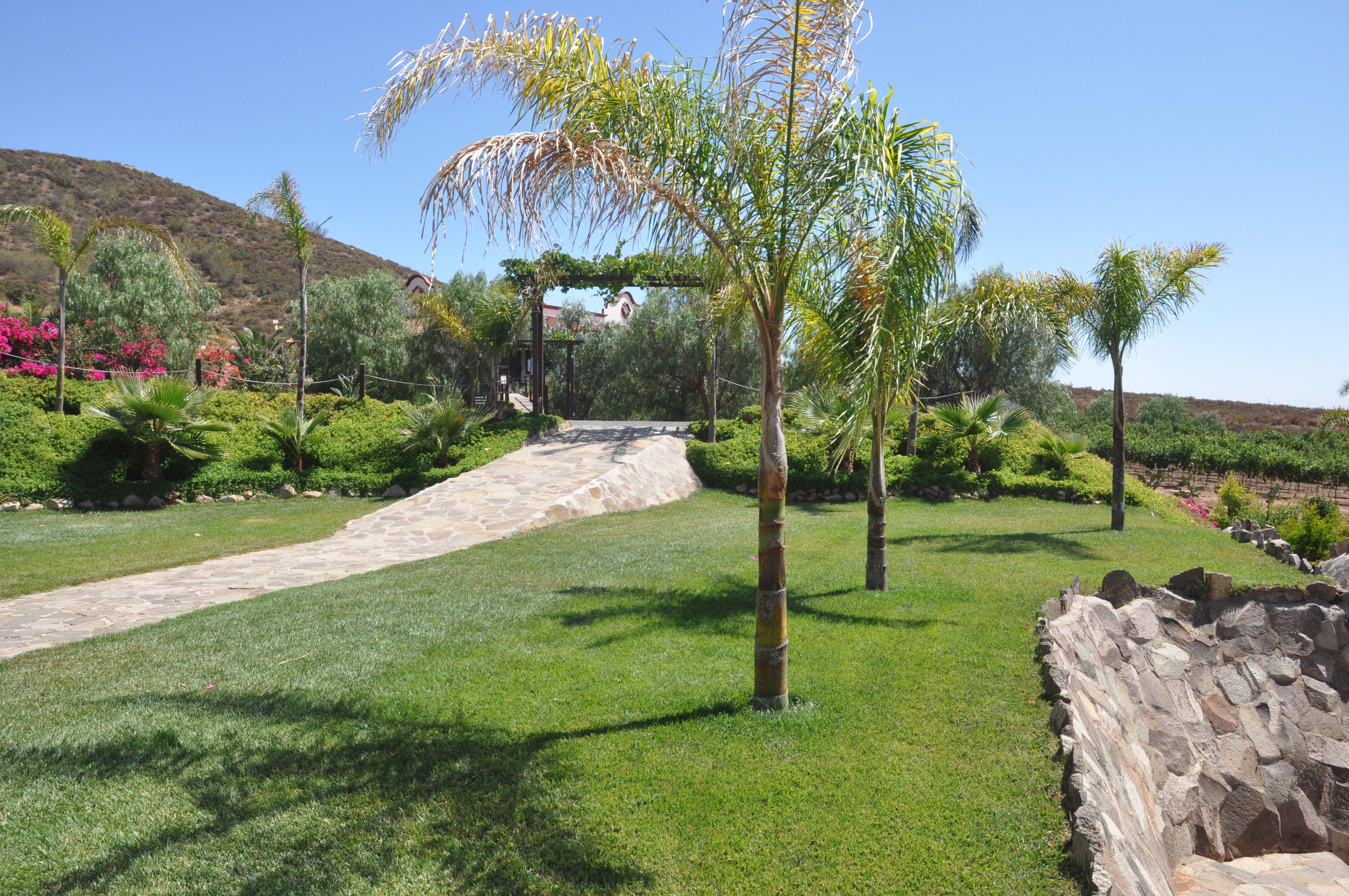 Uno de los jardines ideal para eventos peque os 80 for Jardines para eventos