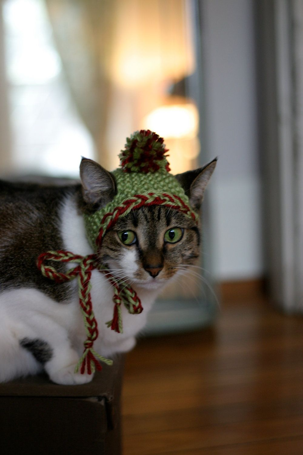Green with Red & Green Braided Trim Earflap Cat Hat