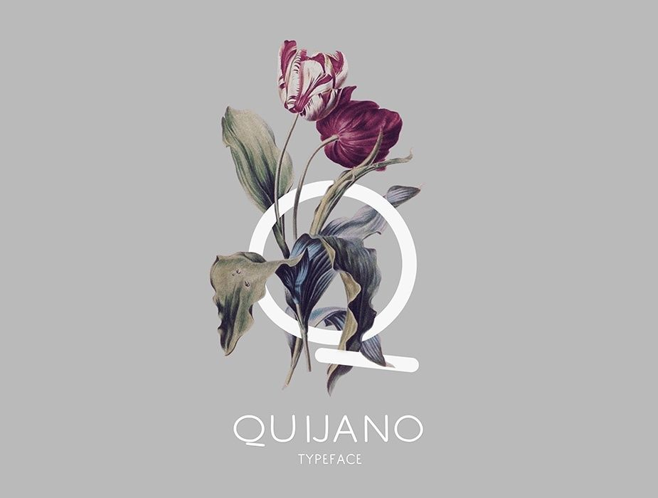 Q IS FOR QUIJANO
