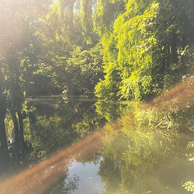 Parco#milano#afterthestorm#milanodavedere#amazing#parcoportavenezia by loridisilvio