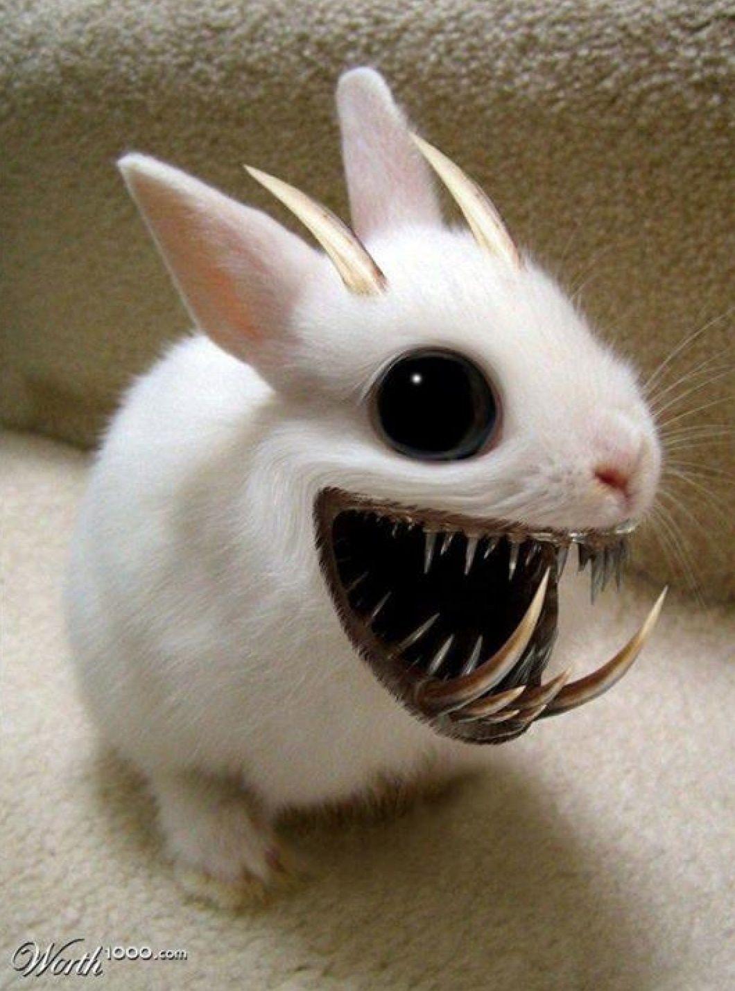 one scary-a** bunny!!!   Creepy cute, Evil bunny, Creepy dolls