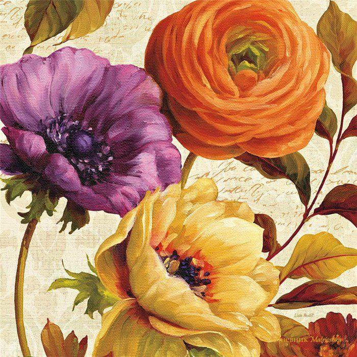 Коллекция картинок: Цветы Lisa Audit