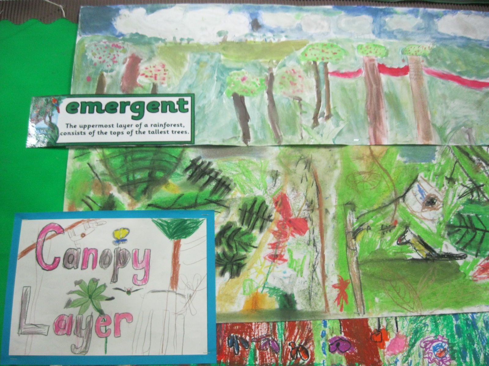 Year 3 Rainforest Topic Ks2