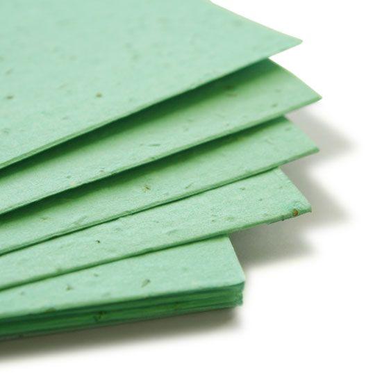 11 X 17 Aqua Plantable Seed Paper Plantable Seed Paper Seed Paper Plantable