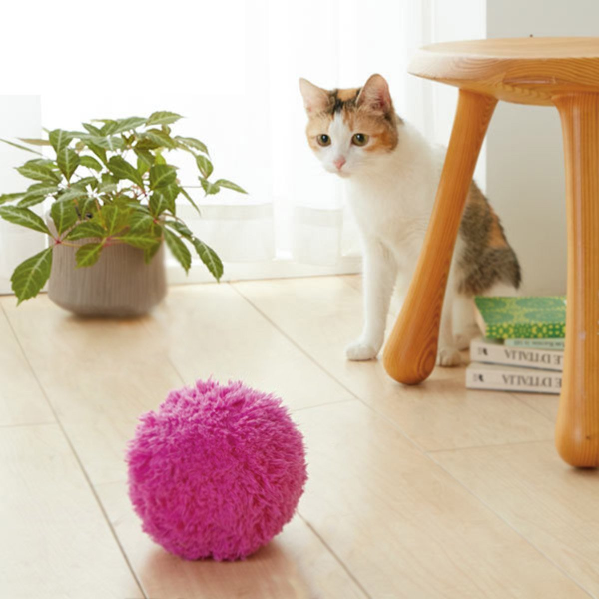 Brite Pet Mop Ball #inspireuplift explore Pinterest