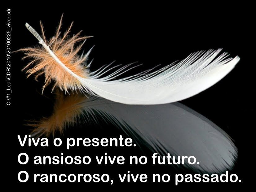 20100225_viver