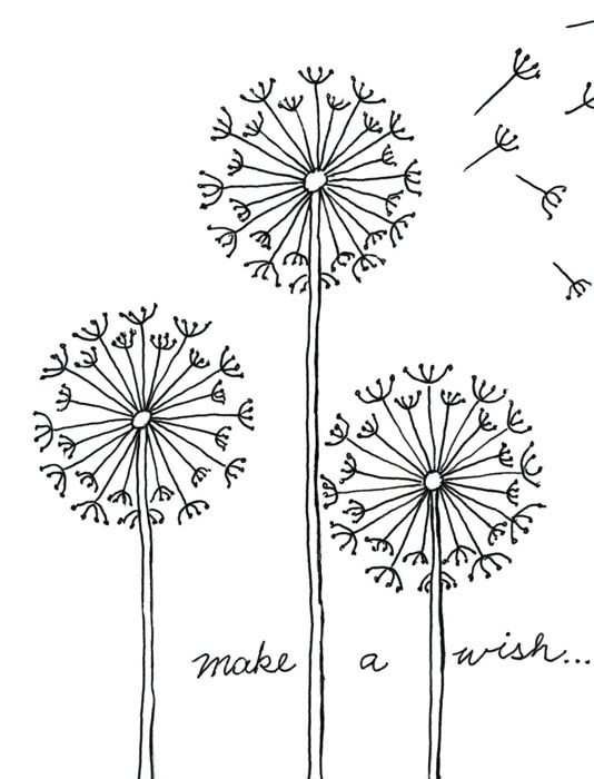 Practice your fine marker skills with this how to draw a dandelion project careful drawing and tracing will make a very pretty and delicate looking flower