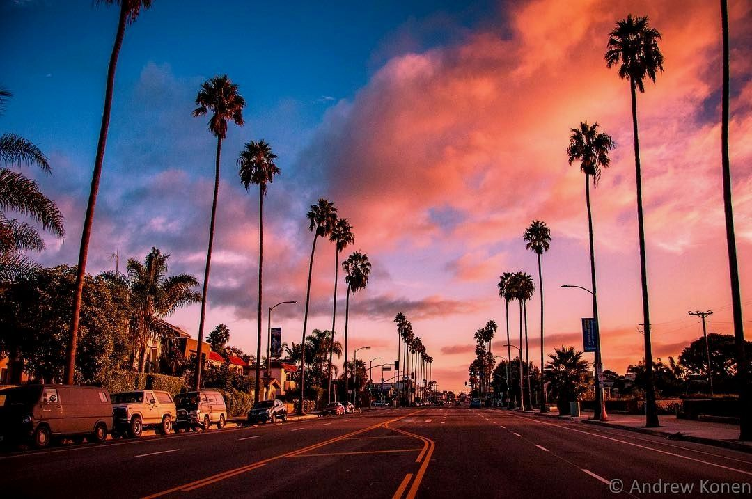 Palm Trees And Cotton Candy Sky For Daze Credit Konenpho In 2020 Laptop Wallpaper Desktop Wallpapers Computer Wallpaper Desktop Wallpapers Desktop Wallpaper Art