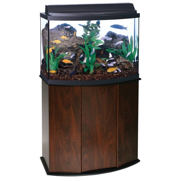 Aqueon 36 gallon bow front aquarium ensemble 250 for Aqueon fish tank