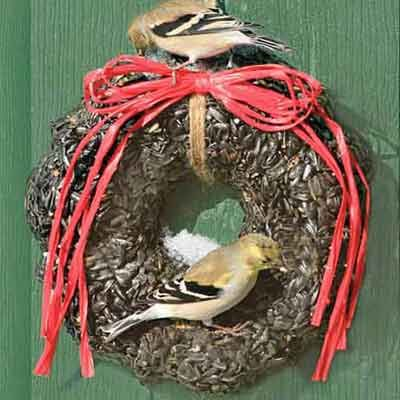 Photo: Duncraft.com | Make a wreath out of birdseed to feed feathered friends this cold season