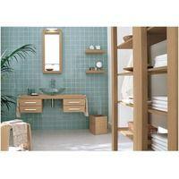 carrelage vert deau  Salle de bain  Salle de bain verte Salle de bain Salle de bains avec wc