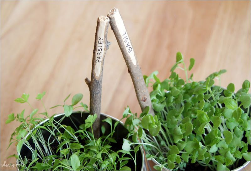 Please Note Diy Plant Markers Creative Plant Labels for