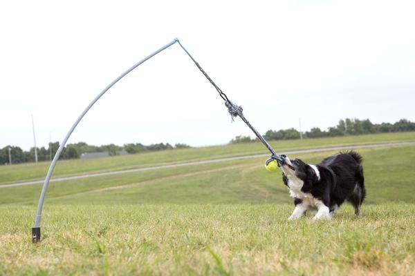 Small Tether Tug 35 Lb Outdoor Dog Toys Smart Dog Toys