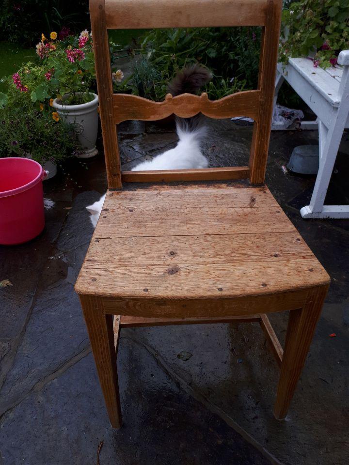 Finn torget møbler