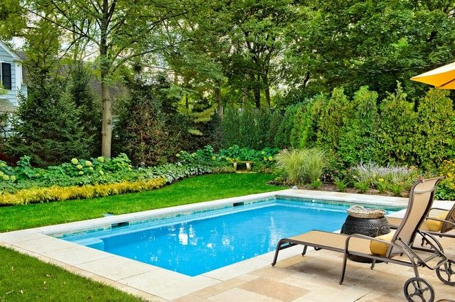 Winnetka Il Swimming Pool Traditional Pool Chicago By Platinum Poolcare Small Inground Pool Small Backyard Pools Simple Pool
