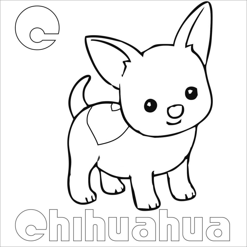 Pin On Pets Coloring Pages [ 1024 x 1024 Pixel ]
