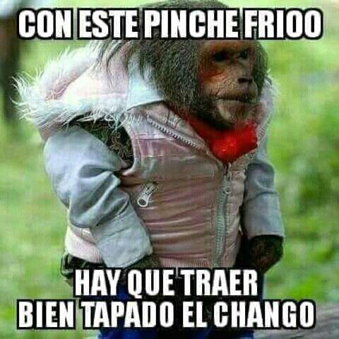 Pin By Ado Lagunas On Funny Quotes With Images Funny Spanish Memes Funny Picture Quotes New Memes