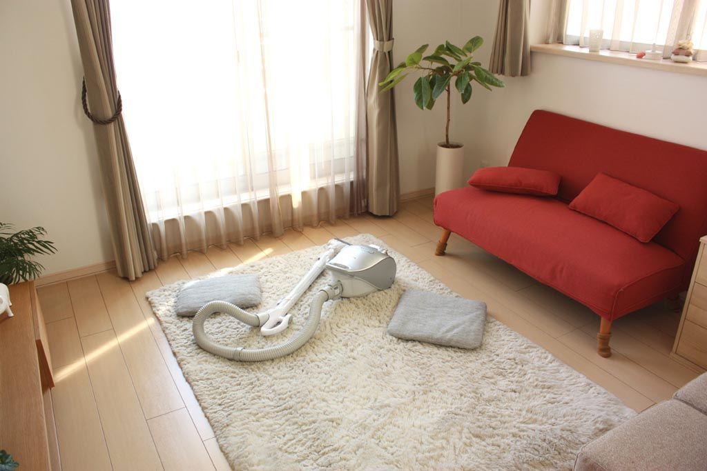 How to Clean a White Shag Rug White shag rug, Clean shag