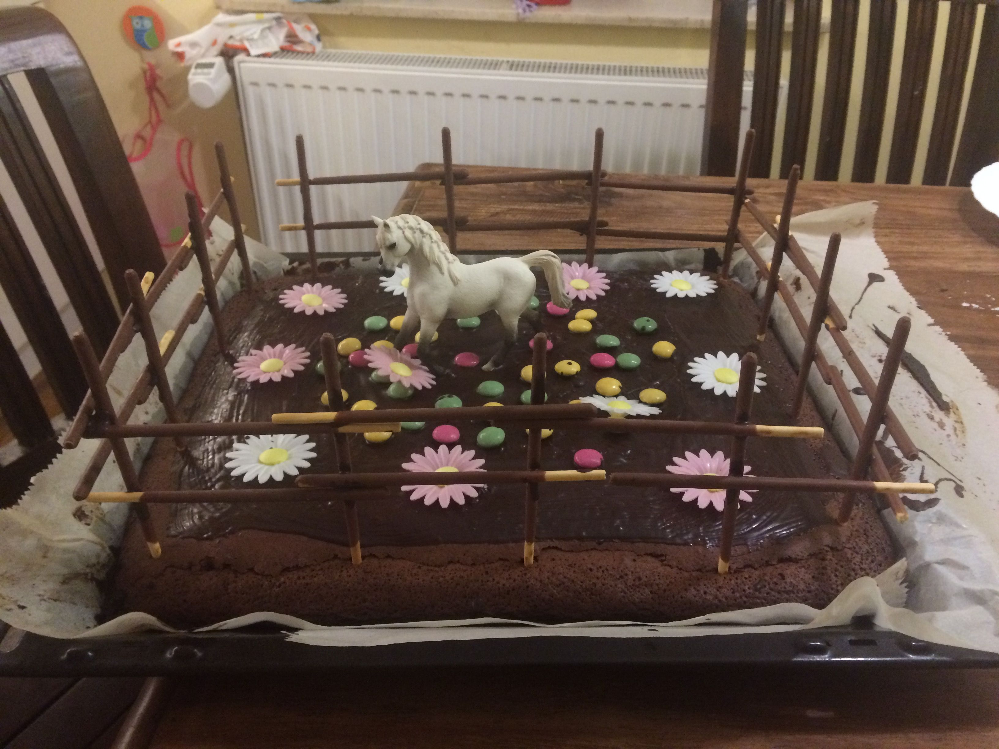 Kindergeburtstag Kuchen Pferde Party | Geburtstag Hannah ...