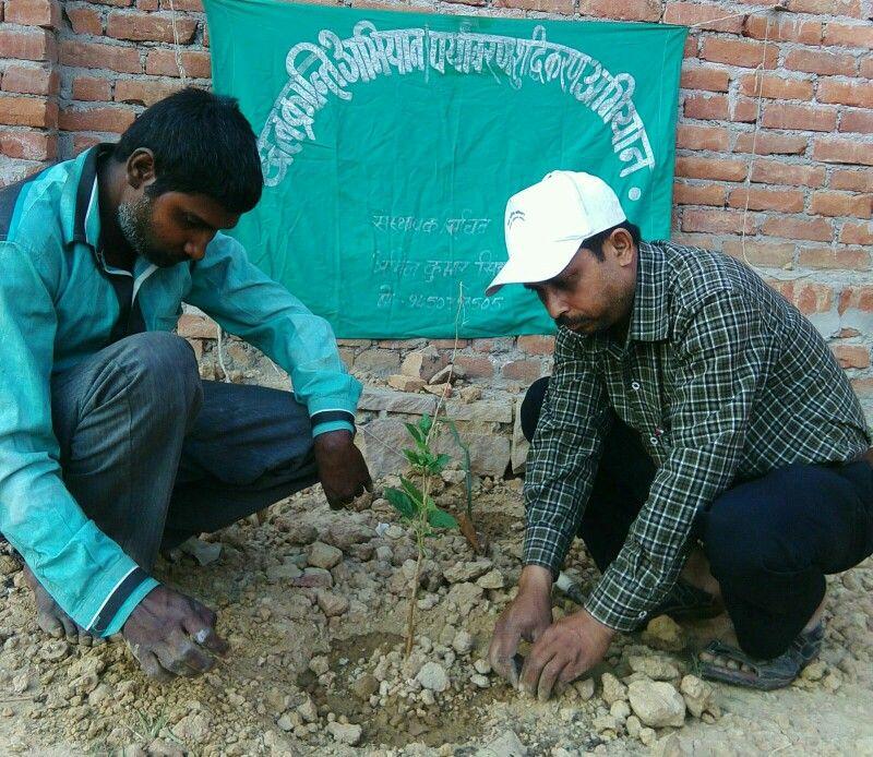 11 मार्च 2016 को 255 वे दिन लगातार पौध रोपण के क्रम में शहतूत के पौध का रोपण  खोरी (कतवारूपुरा) के साथ जे.पी.पुरम कॉलोनी,पटेल नगर,अनगढ़ रोड मिर्ज़ापुर में अनुराग जी के प्लाट पर किया।