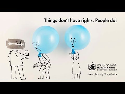21 Human Rights And Un Mechanisms Ideas Human Rights Human United Nations Human Rights