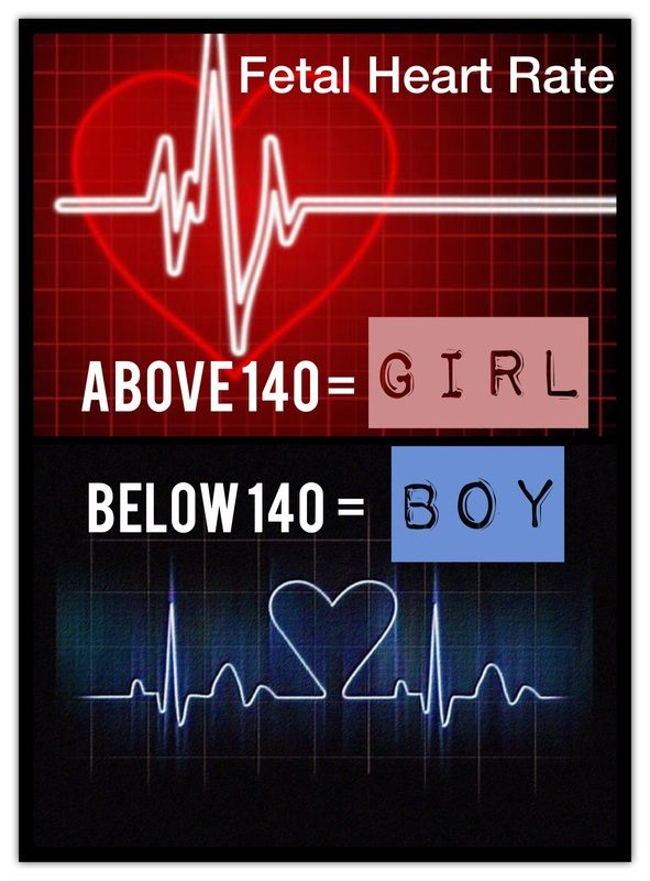 Heart Rate Gender Prediction Pregnancy Pinterest Baby