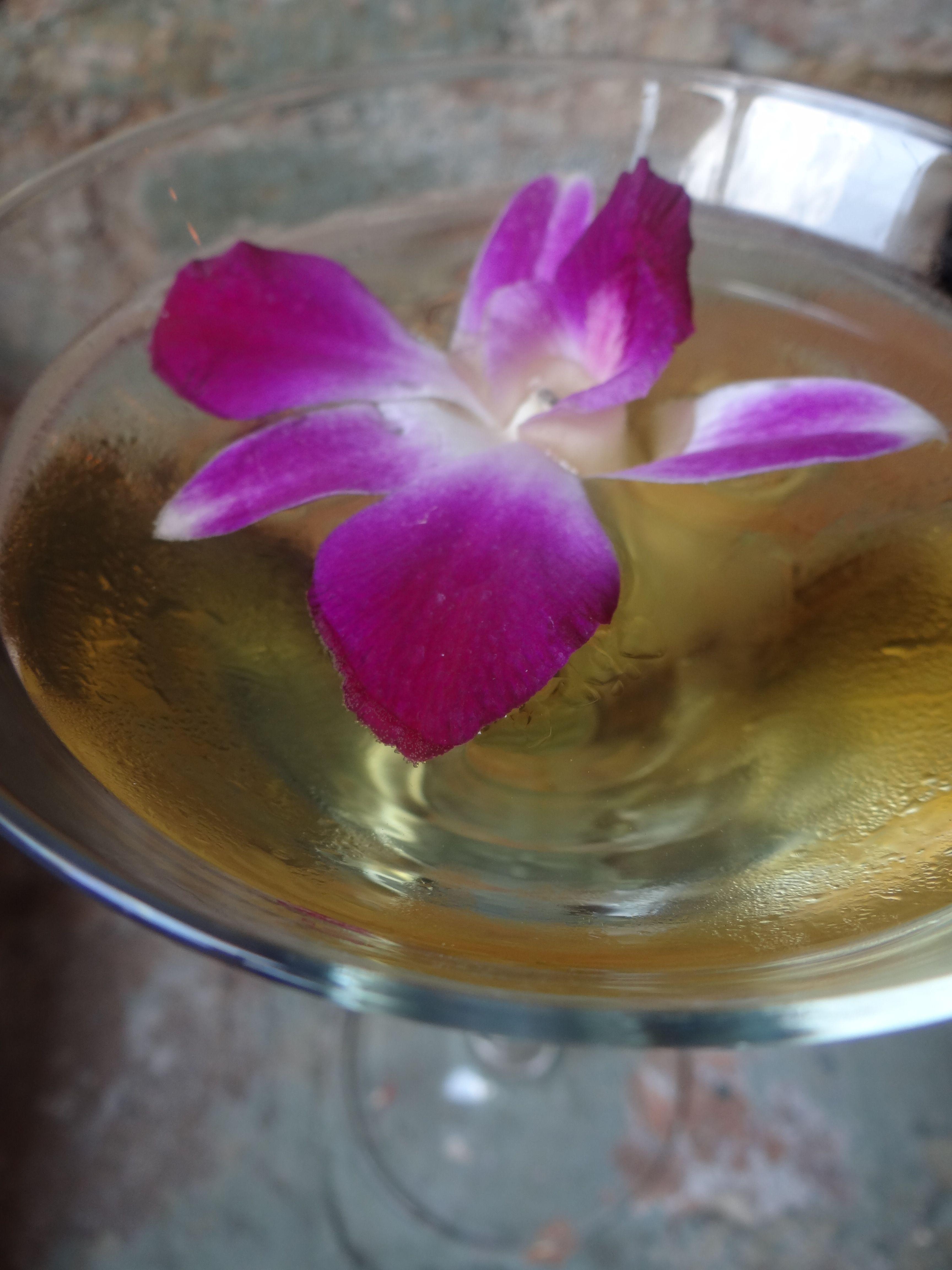 The Fantastic New Signature Wildflower Martini Wild Tea Vodka Lemon Liqueur Elderflower Liqueur And Ginger Ale Lemon Liqueur Ginger Ale Elderflower